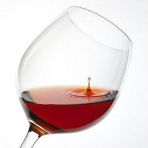 Fumifumi談義「ワインと健康」